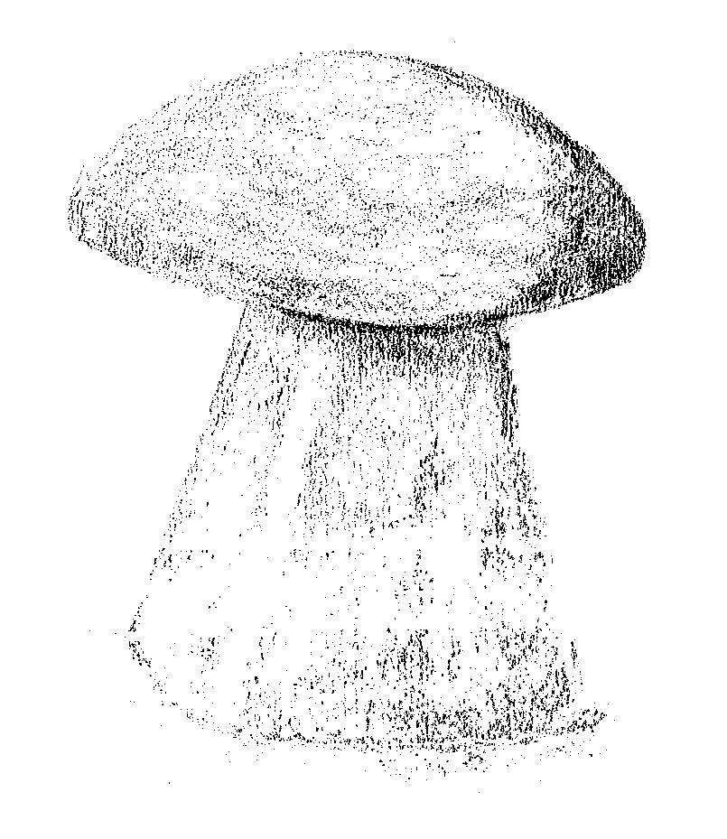 Sketch of a staddlestone (c) MJM