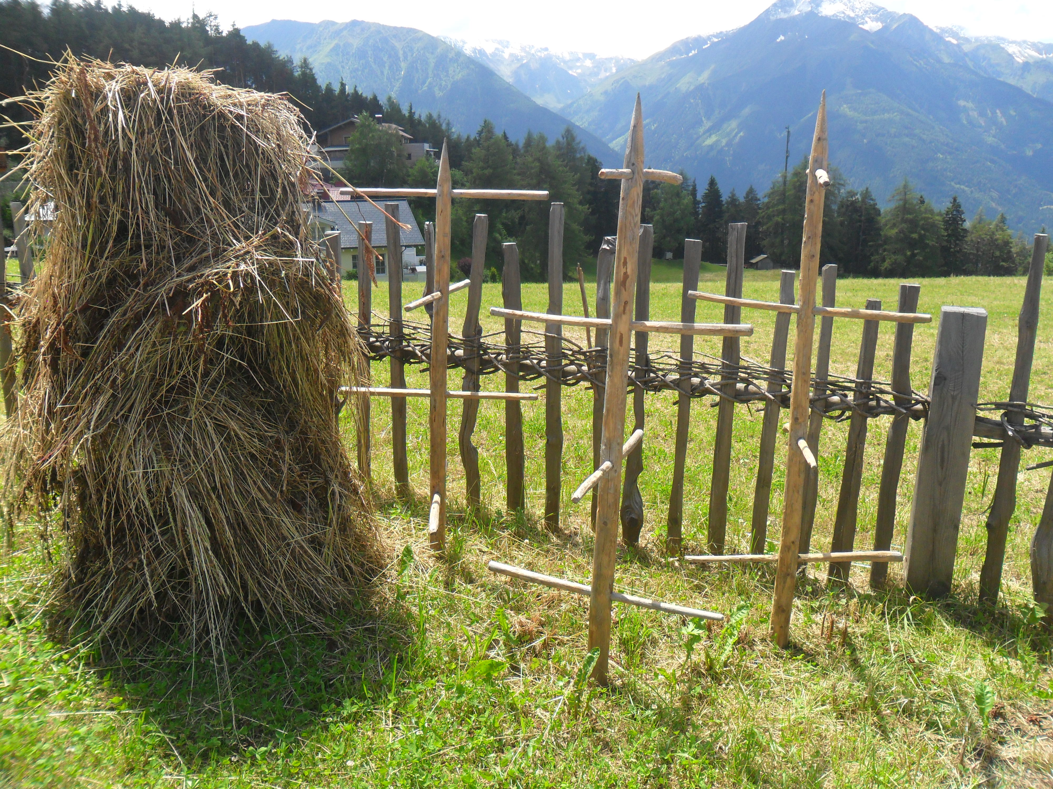 Demonstration of Stannger: hay-drying poles in North Tyrol, Austria, July 2014